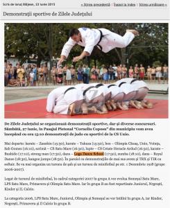 Demonstratii sportive de Zilele Judetului (informatia-zilei.ro)