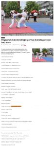 Programul de demonstratii sportive de Zilele Judetului Satu Mare (portalsm.ro)