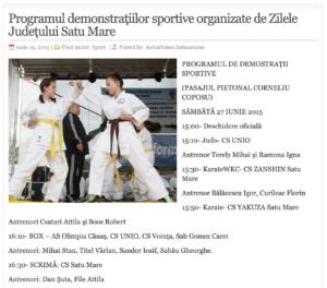 Programul demonstratiilor sportive organizate de Zilele Judetului Satu Mare! (actualitateasm.ro)